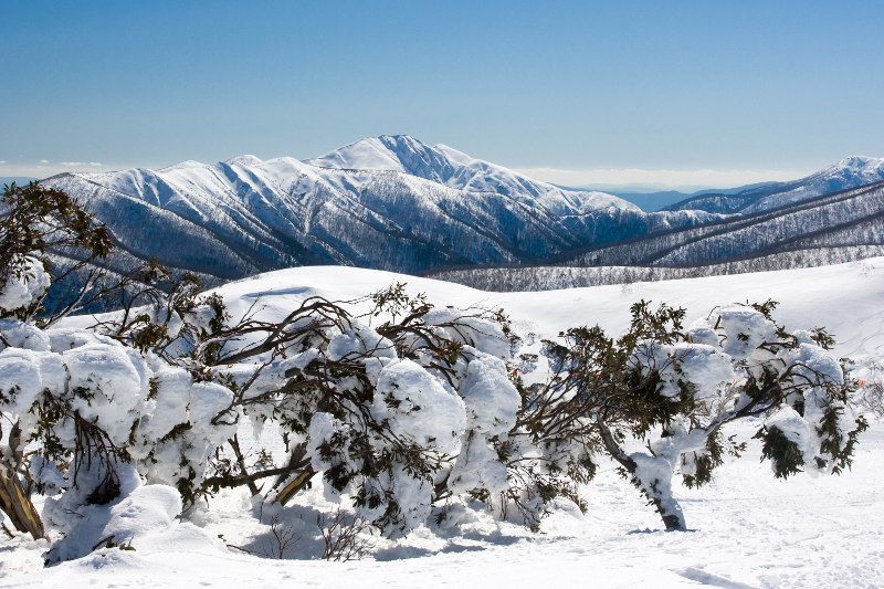 Mount Hotham in winter snow Victoria Australia
