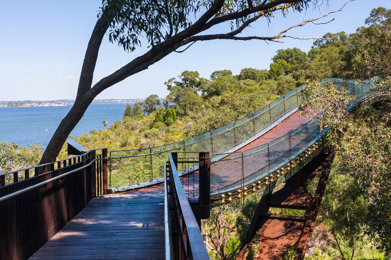 Kings Park Perth Australia