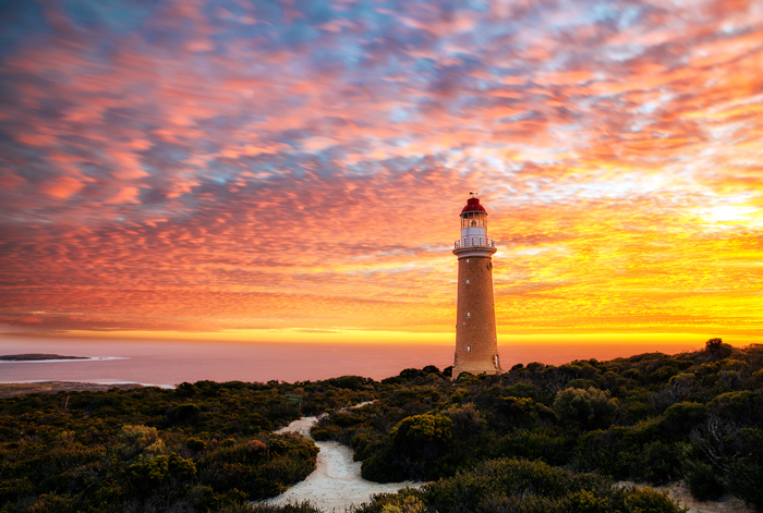 close to home cruises - kangaroo island
