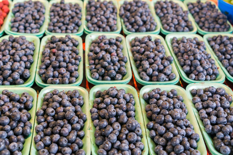 Punnets of blueberries at a market in Montreal, Canada