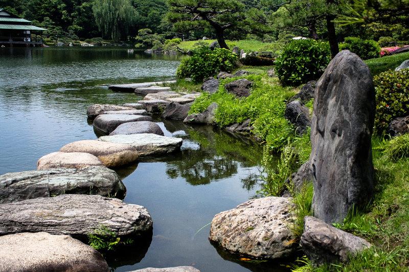rocks in pond in park
