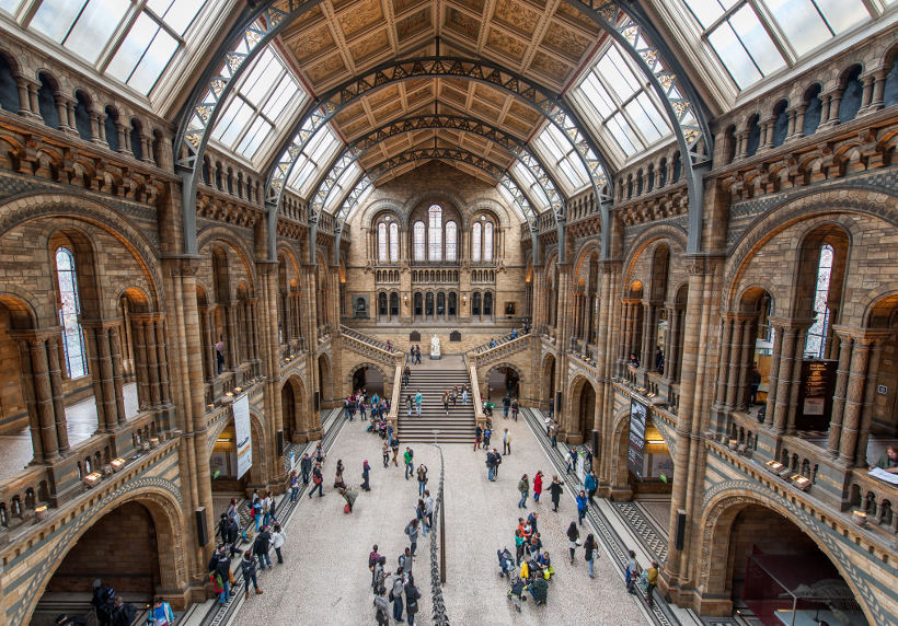Great hall in the natural history museum london