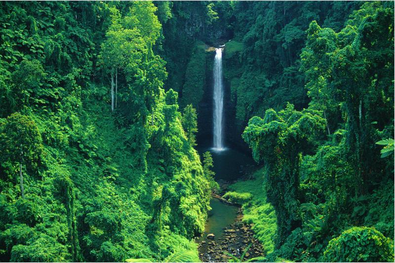 Pristine natural waterfall rainforest, Samoa