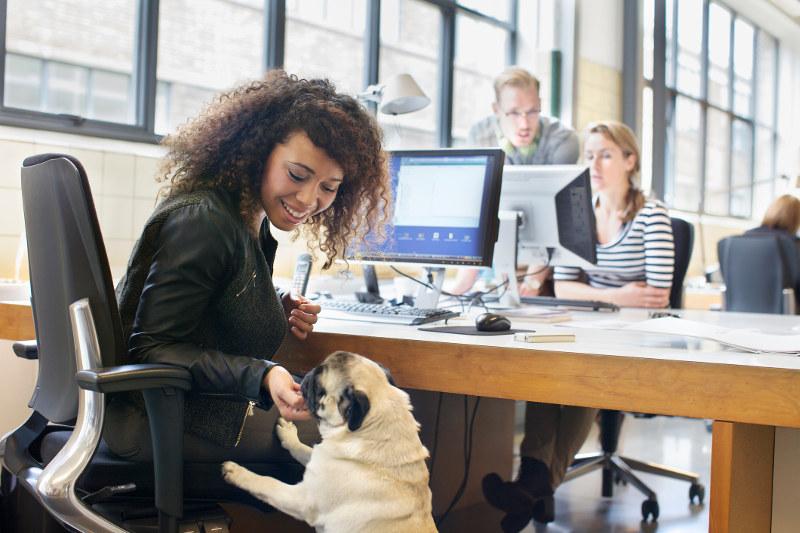 women petting dog at desk