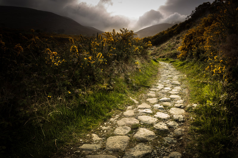 cobbled path, english countryside