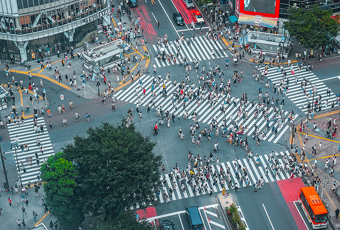 shibuya crossing is a tokyo highlight