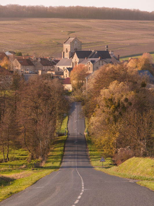 Road leading into town in champagne region of france