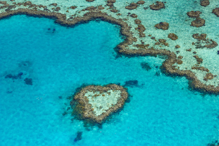 image of heart reef, a heart shaped coral formation in the Whitsunday Islands