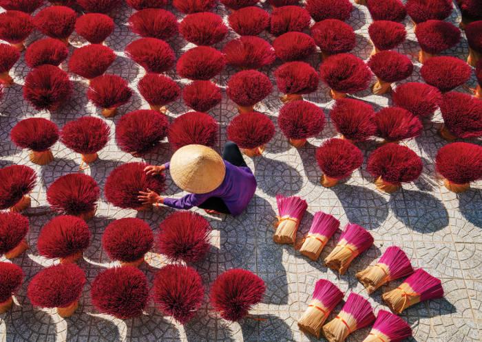 insense drying in vietnam