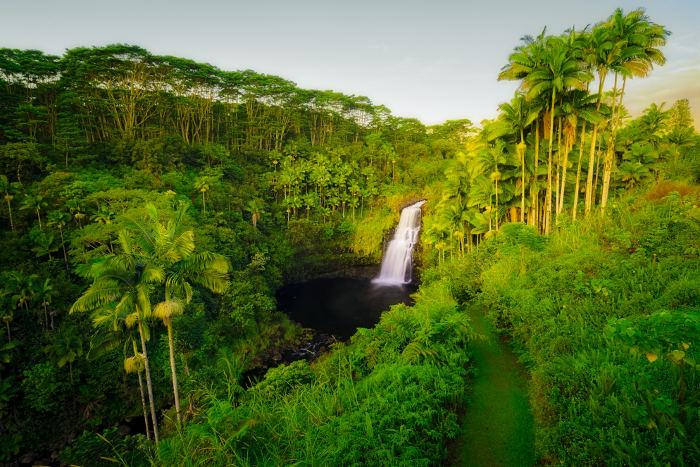 Kulaniapia Falls Hilo hawaii
