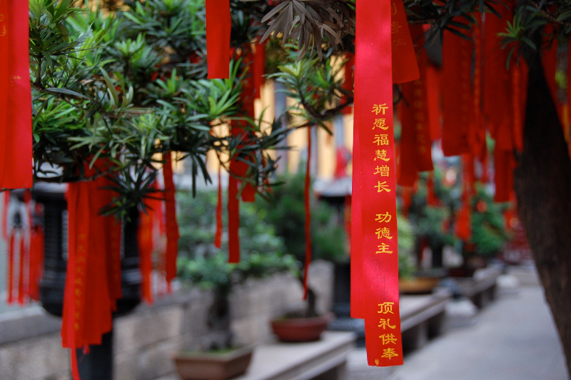 Chinese prayer ribbons hanging from bonsai trees at the Jade Buddha Temple, Shanghai, China