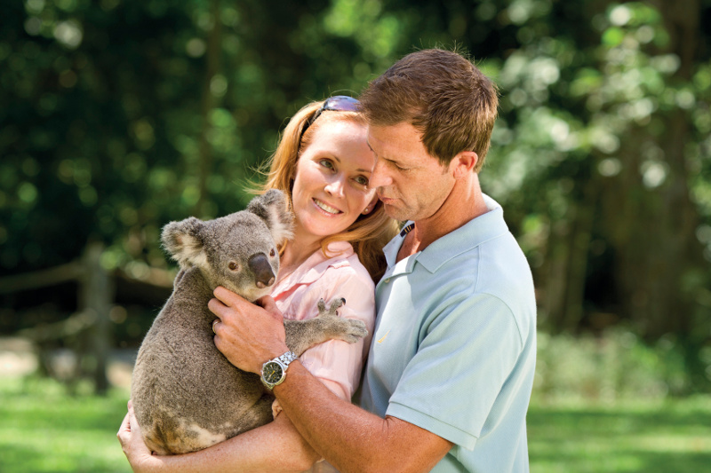 Couple cuddles a koala at Currumbin Wildlife Sanctuary on the Gold Coast.