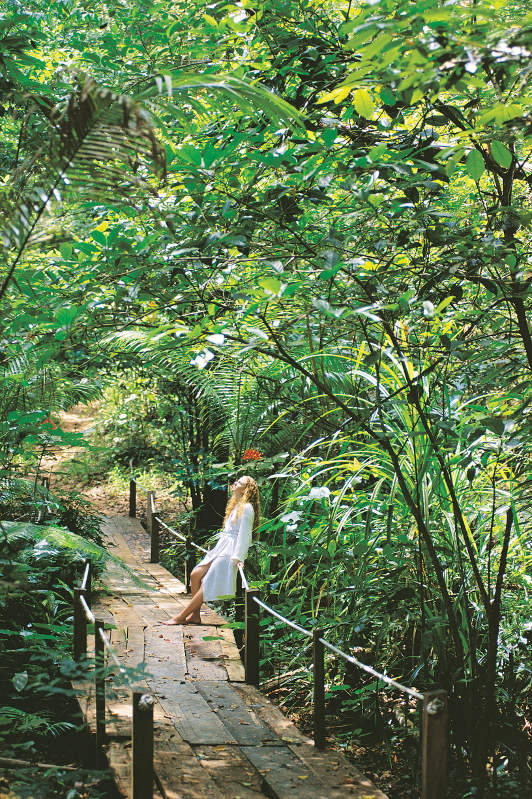 A woman stands on a path in the Daintree Rainforest of Tropical North Queensland.