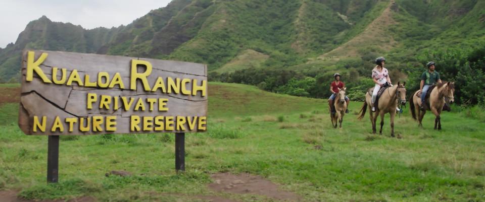 horseback riding ualoa ranch oahu hawaii