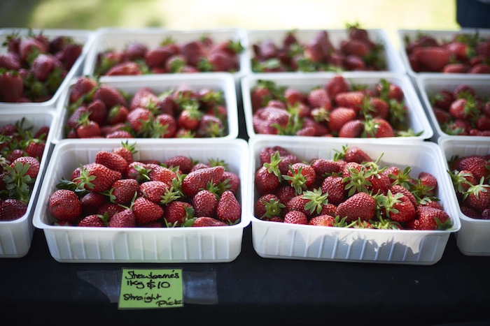 things to do NZ that aren't skiing - Hawkes Bay Farmers Market strawberries