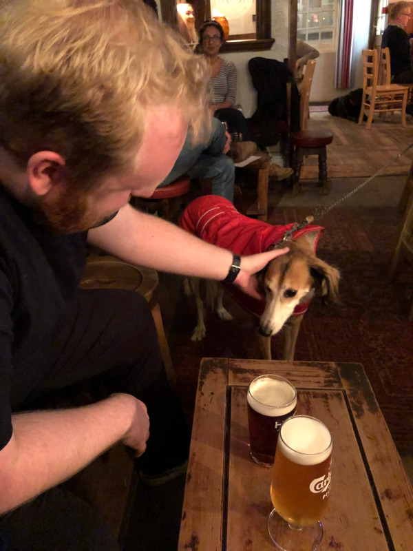 Damon patting Mia the dog who is eyeing off my Carlsberg beer