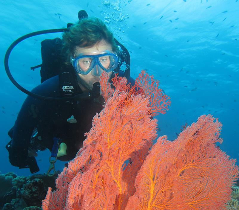 Diver with coral in Vanuatu