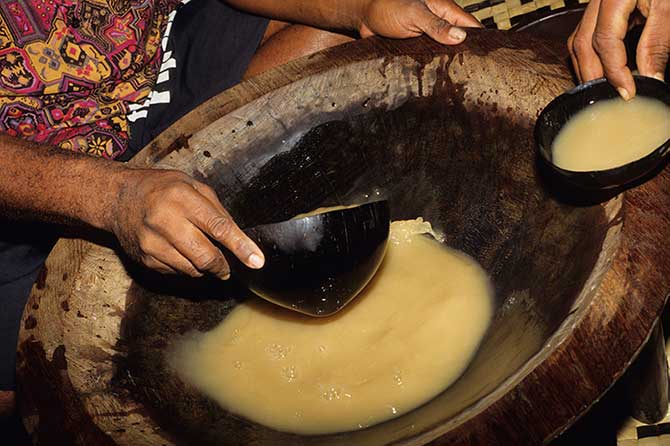 Kava is a popular traditional drink in Fiji, made from a tree root