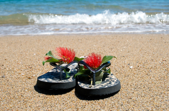 Jandals - thongs - on the beach in New Zealand.