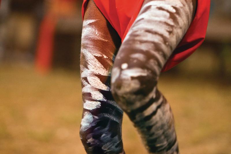A close up of an Aboriginal dancer's legs.