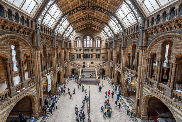 Inside one of London's many museums