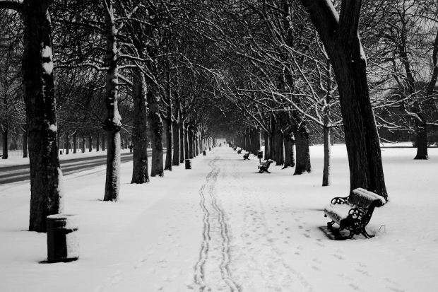 Park in London blanketed in snow