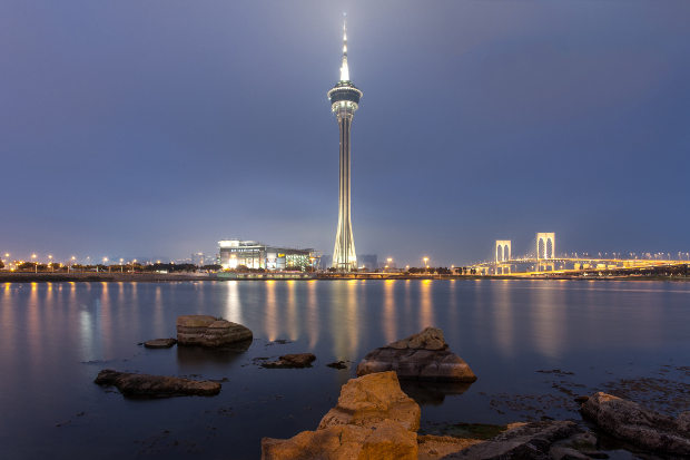 The Macau Tower in the distance lit up at night