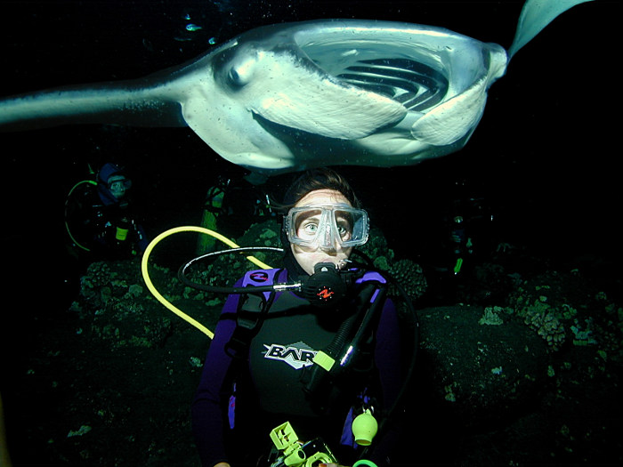 diver and manta ray swimming