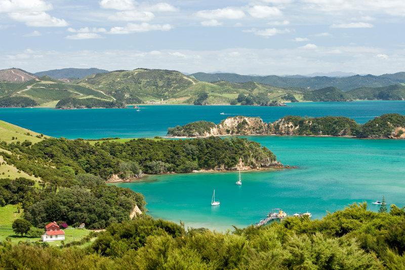 Rolling green hills and surrounding blue ocean at Urupukapuka Island in New Zealand.