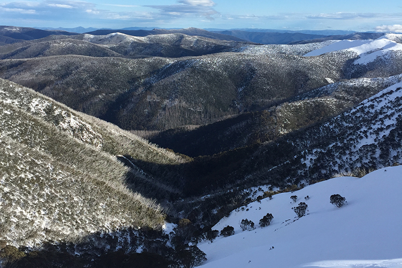 View of Mount Hotham from the chairlift