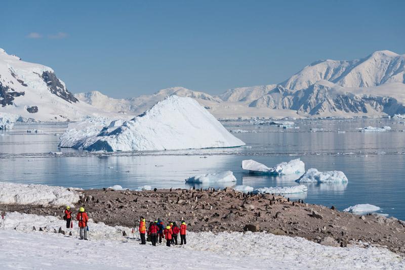 Neko Harbour Image: Chelsea Claus for Hurtigruten