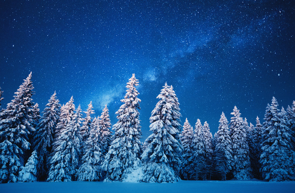 A starry winter night