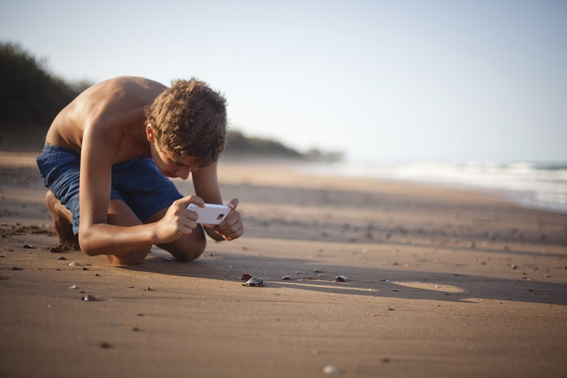 Watch the turtle hatchlings scurry along. Image: Tourism and Events Queensland Rowan Bestmann.