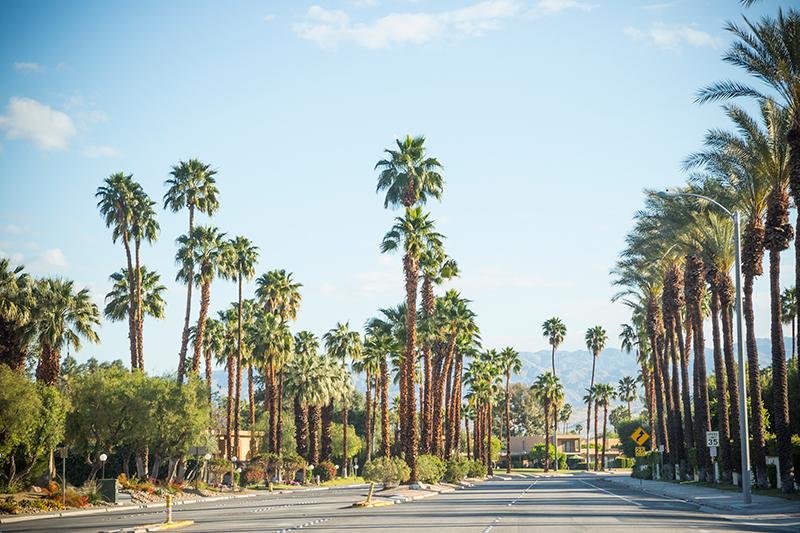 Palm Springs street