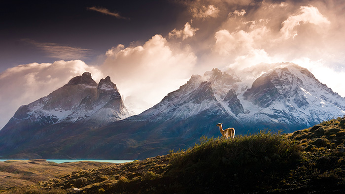 patagonia's top sights - torres del paine