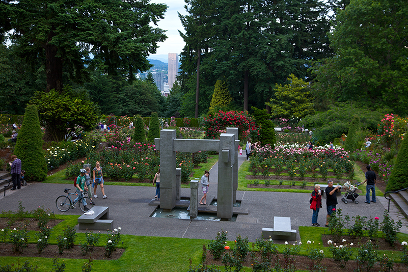 Aerial view of people in Portland's International Rose Test Garden