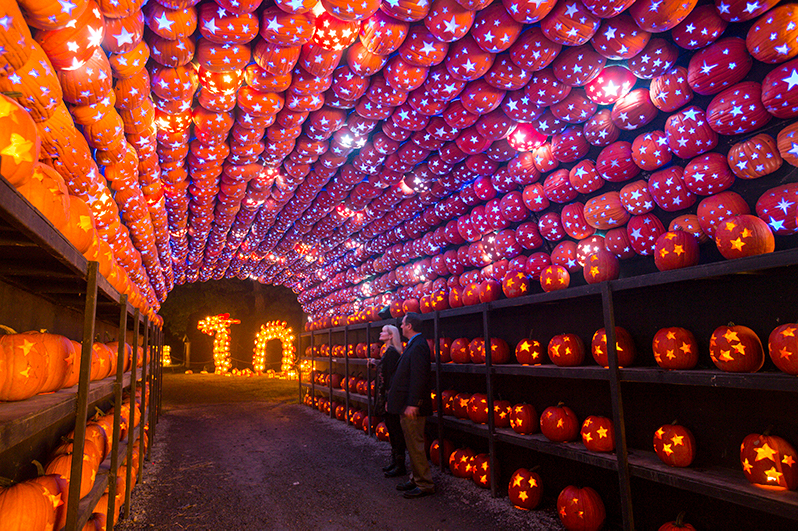 the Pumpkin Planetarium at the Great Jack O' Lantern Blaze