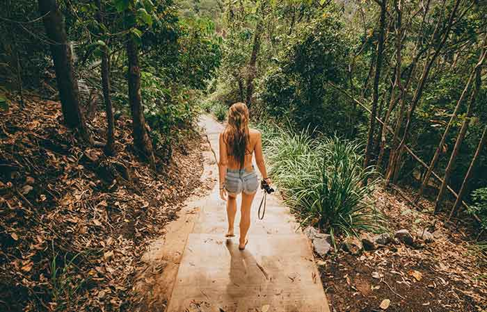 Explore Cairns and its lush rainforest