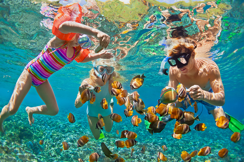 Family swimming with tropical fish