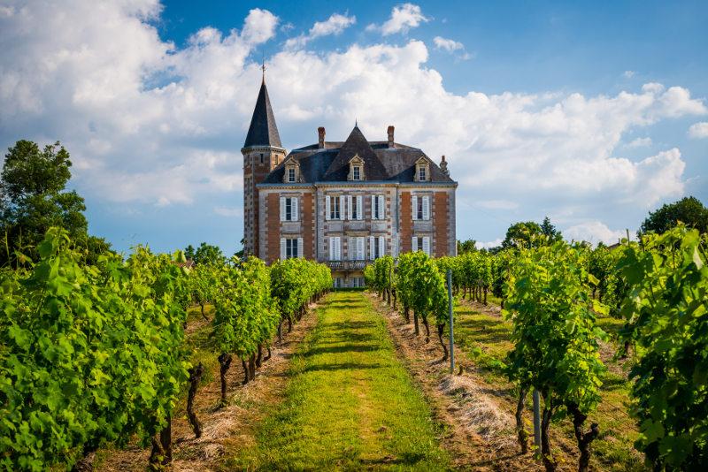 castle and vineyard in Bordeaux, france