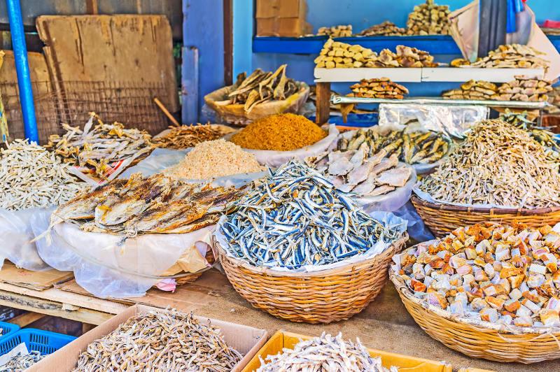 fish market in colombo, sri lanka