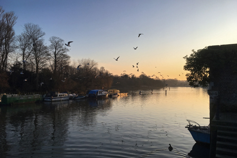 winter morning on the thames river, london