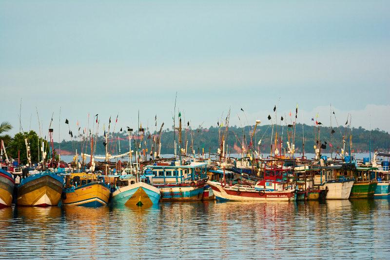 Fishing boats in the Mirissa harbour, Sri Lanka.