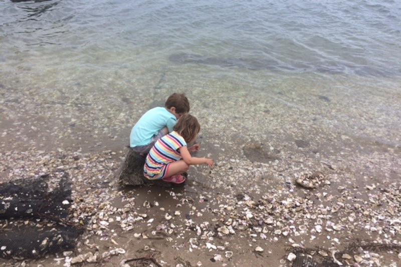 children exploring water's edge at yamba new south wales