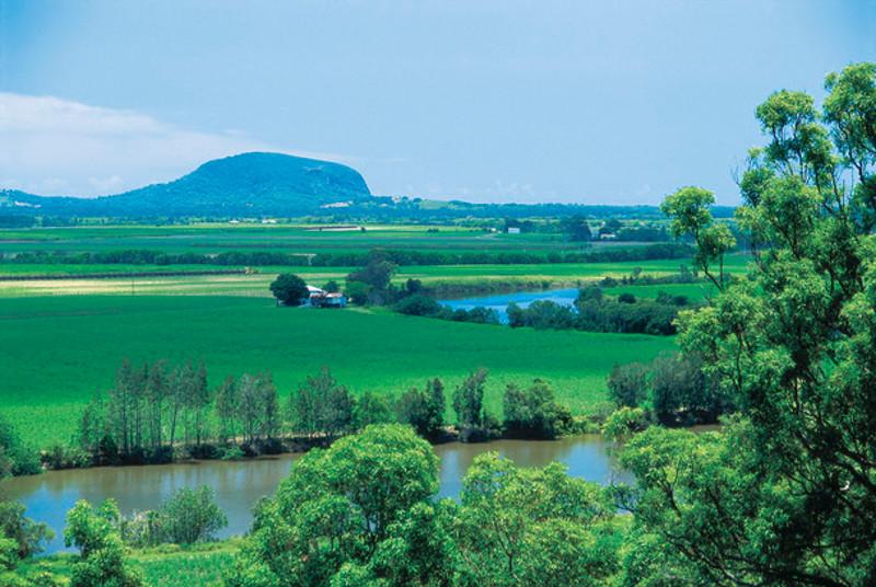 view of Yandina