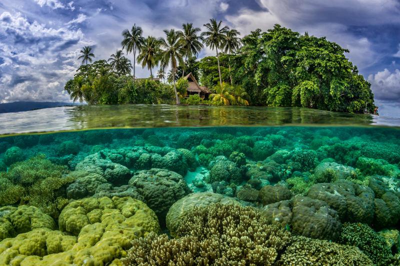 tropical island in the Solomon Islands