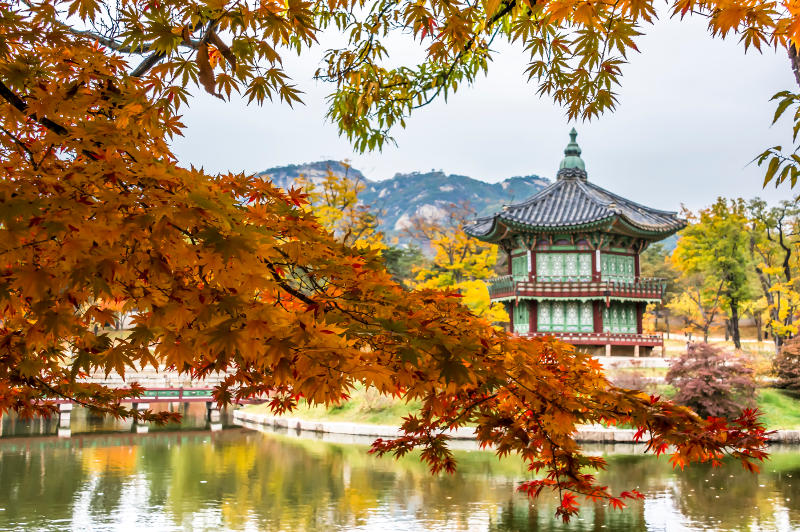 autumn colours south korea