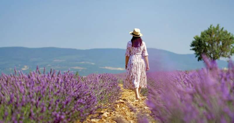 Anna walking through a field of lavender