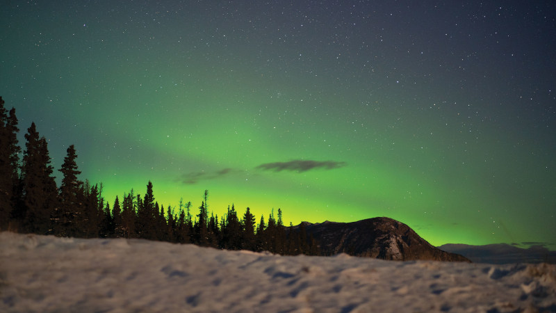 The breathtaking green aurora as seen from Mount Logan Lodge