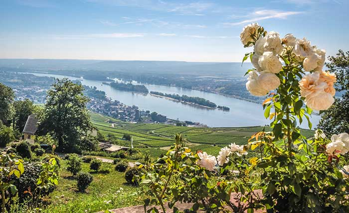 Rudesheim Rhine Valley